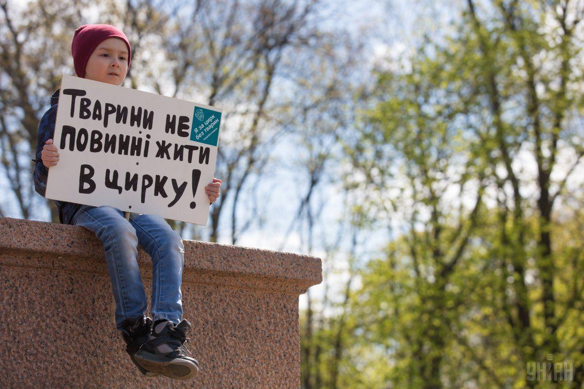 Против выступлений животных в цирках Украины выступают уже не первый год / фото УНИАН