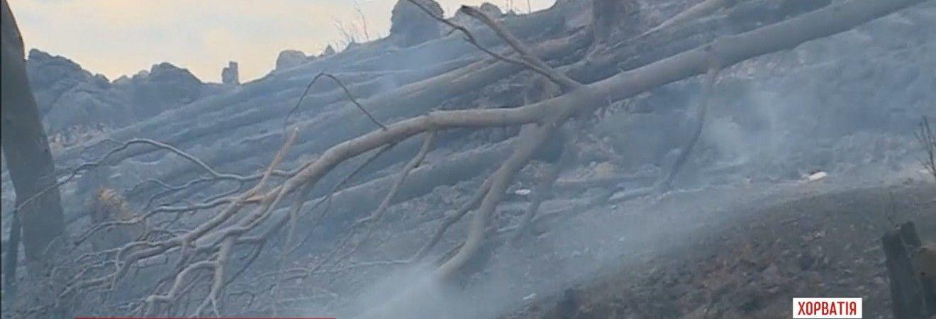 Хорватія у вогні: лісові пожежі охопили південне узбережжя країни (відео)