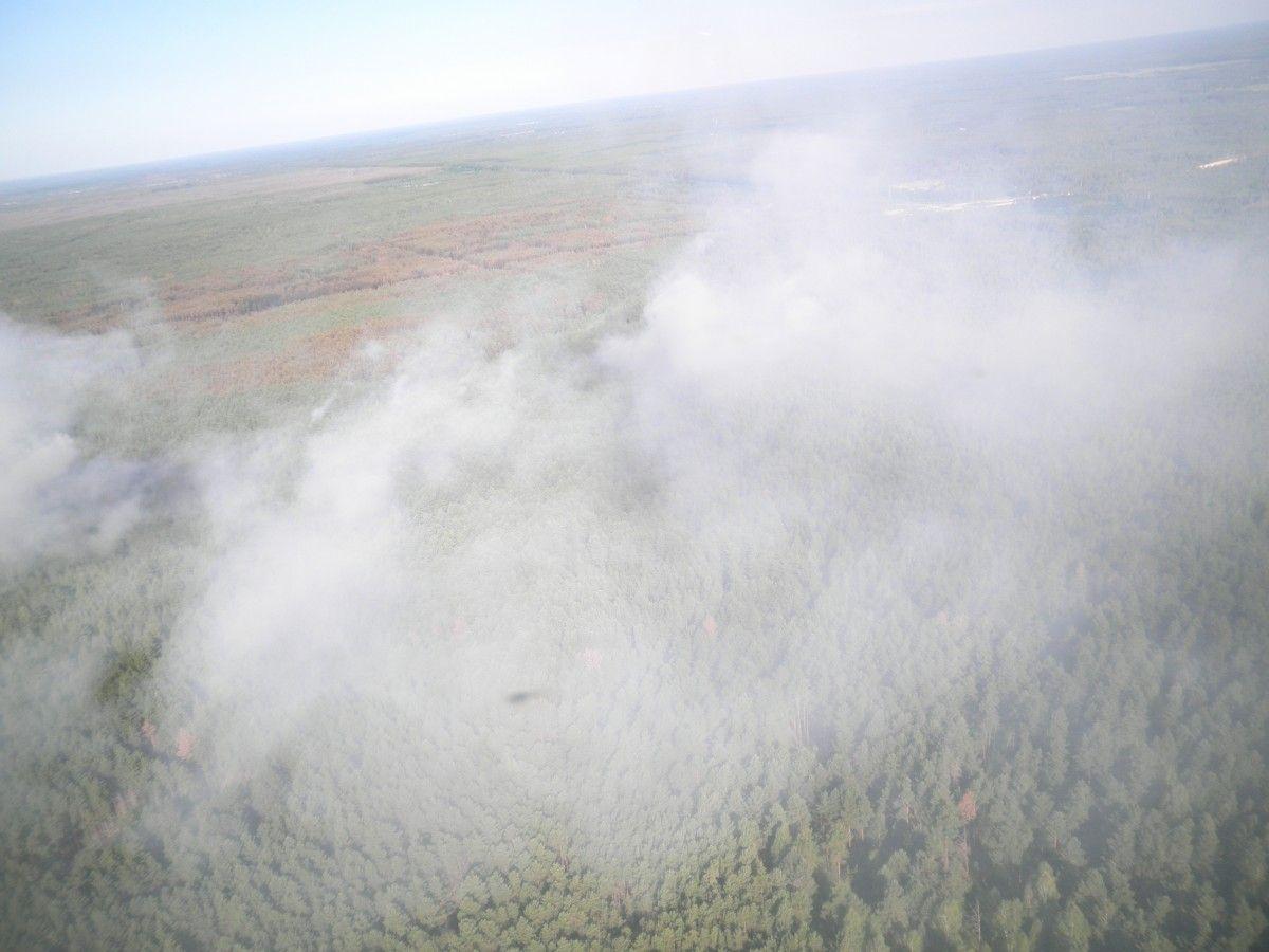 Пожар в Чорнобільські зоне / фото ГСЧС
