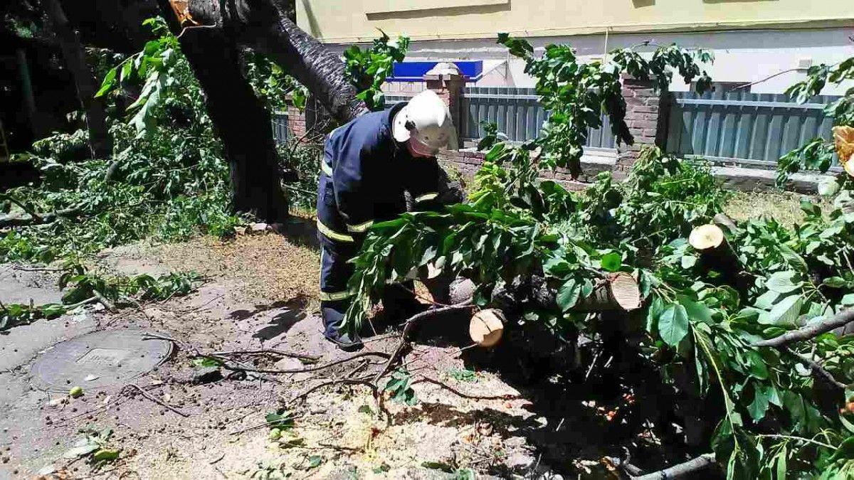 Бригади обленерго відновили електропостачання 366 населених пунктів / фото dsns.gov.ua