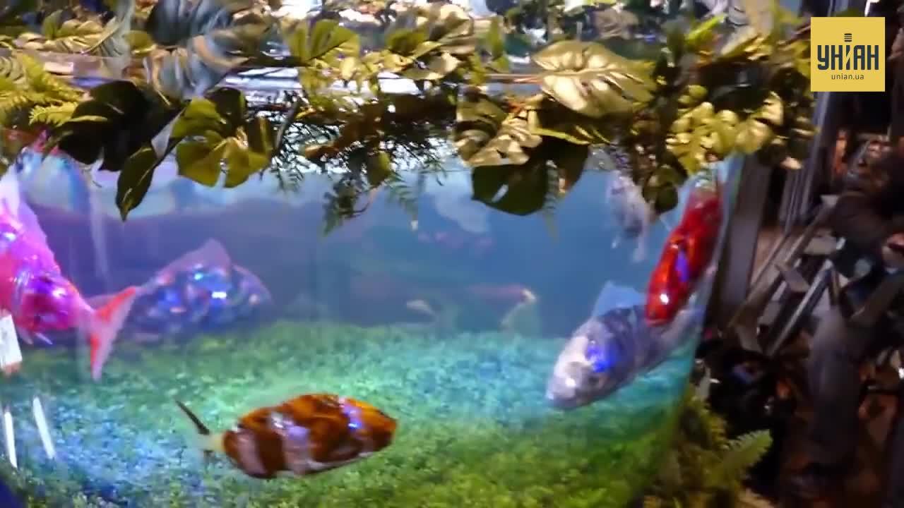 Риби-роботи практично нічим не відрізняються від справжніх водних мешканців / скріншот УНІАН