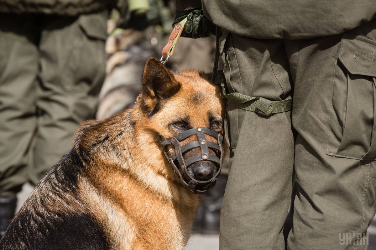 В центре города безопасность будут обеспечивать около 500 полицейских и нацгвардійців / фото УНИАН