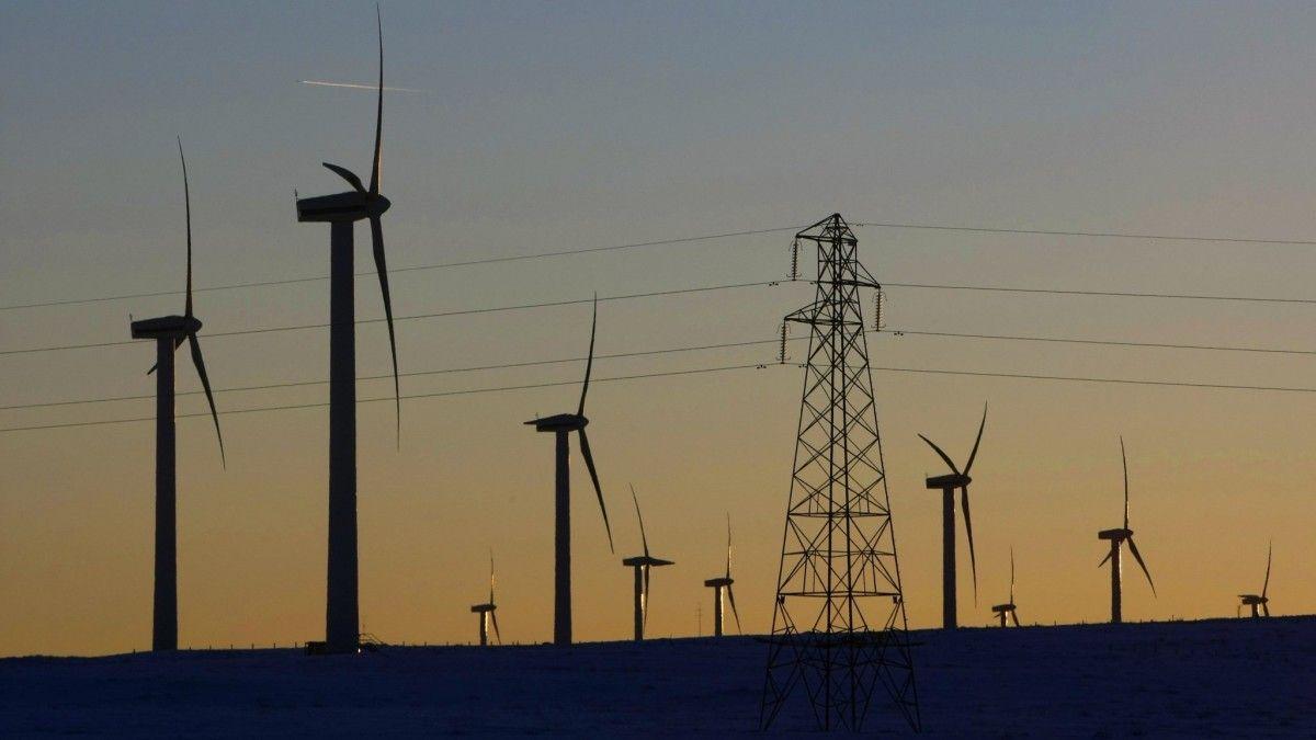 Государство само себя загнало в угол тем, что в течение нескольких лет поддерживало инвесторов в возобновляемую энергетику / REUTERS