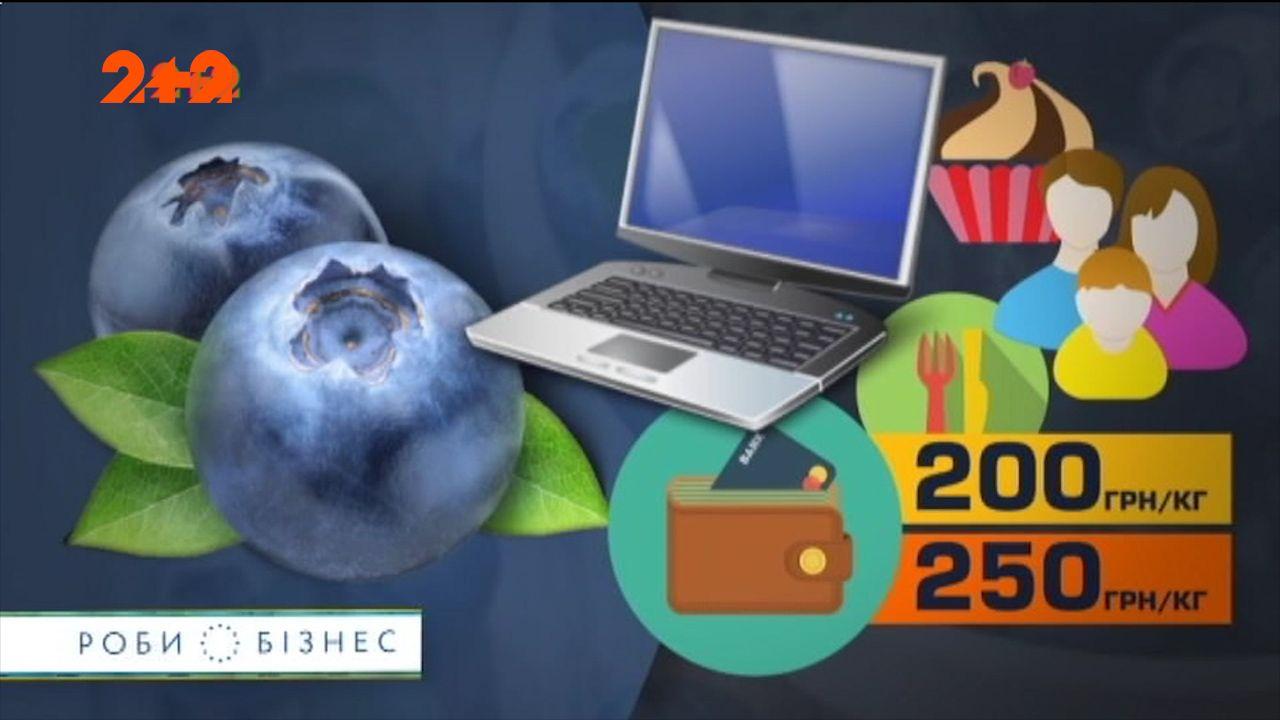 Вирощування лохини - прибутковий і перспективний бізнес в Україні /