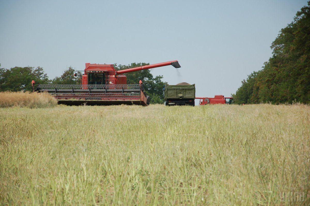 Українські аграрії експортували 4,6 млн тонн зернових / фото УНІАН