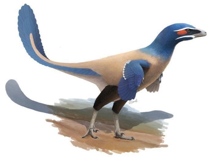 Канадські палеонтологи описали новий вид динозаврів із пір'ям