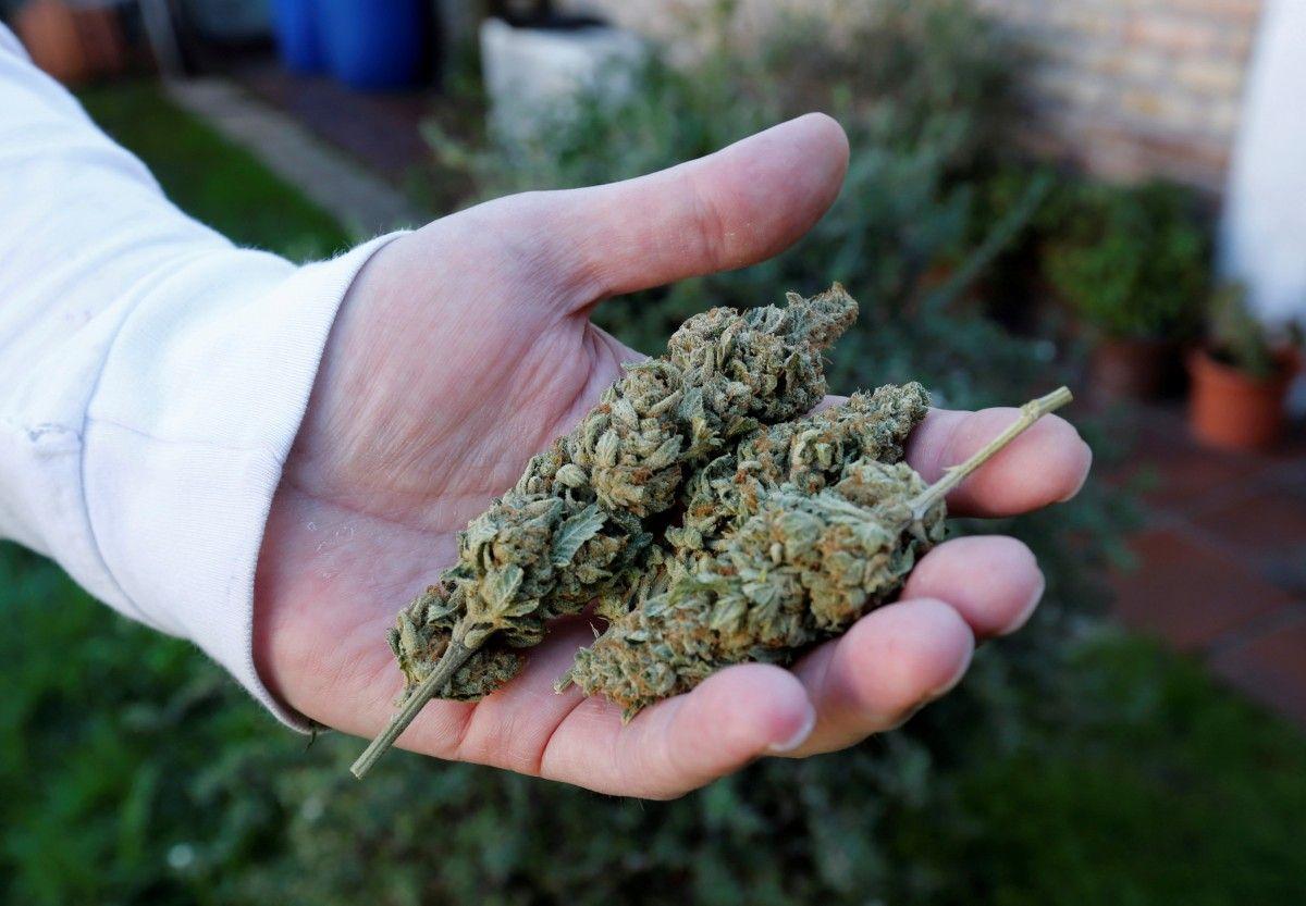 Можно марихуану есть за сколько выходит марихуана из крови