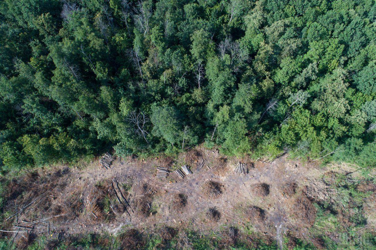 В Украине могут фиксировать эконарушения с помощью аэрокосмической съемки / фото УНИАН
