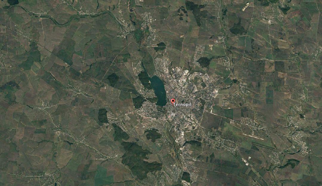 Фото леса в 2016 году / фото Google Earth