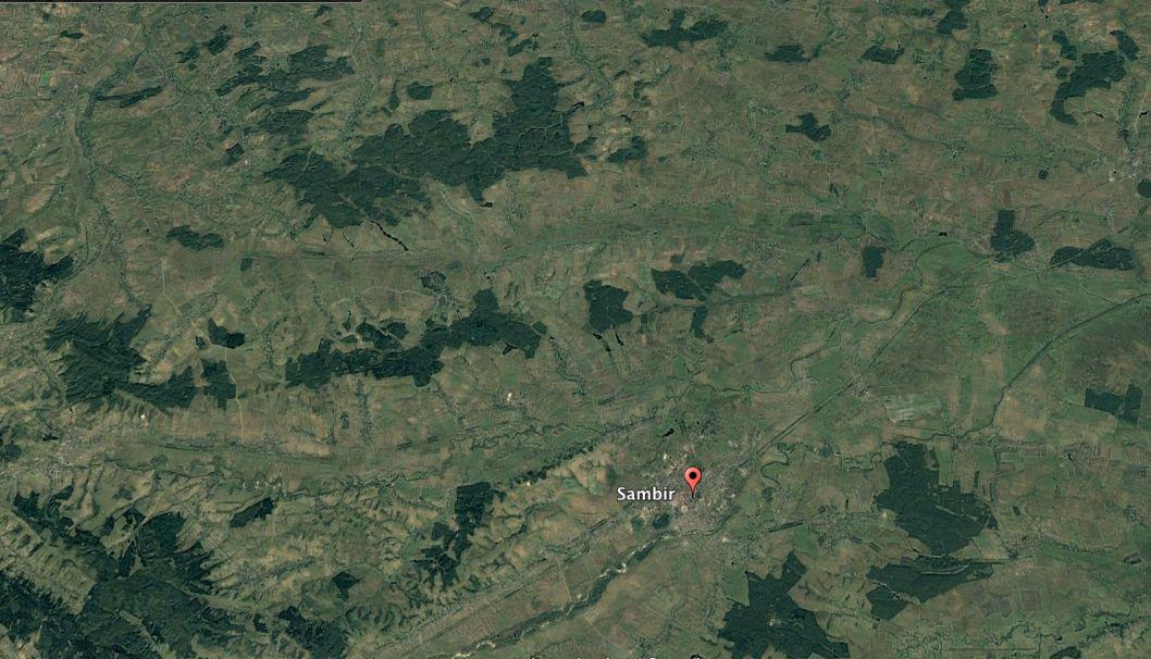 Лес во Львовской области в 2005 году / фото Google Earth