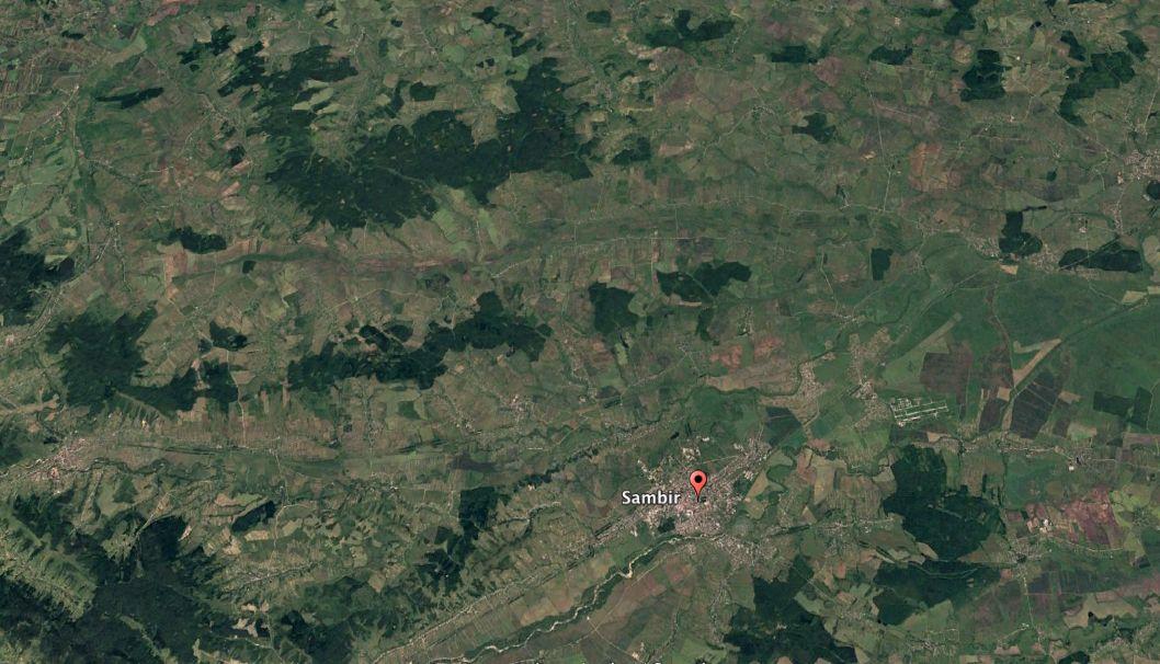 Лес во Львовской области в 2016 году / фото Google Earth