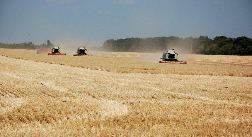 Рада направила в КС изменения в Конституцию об определении ферм как основы аграрного устройства Украины