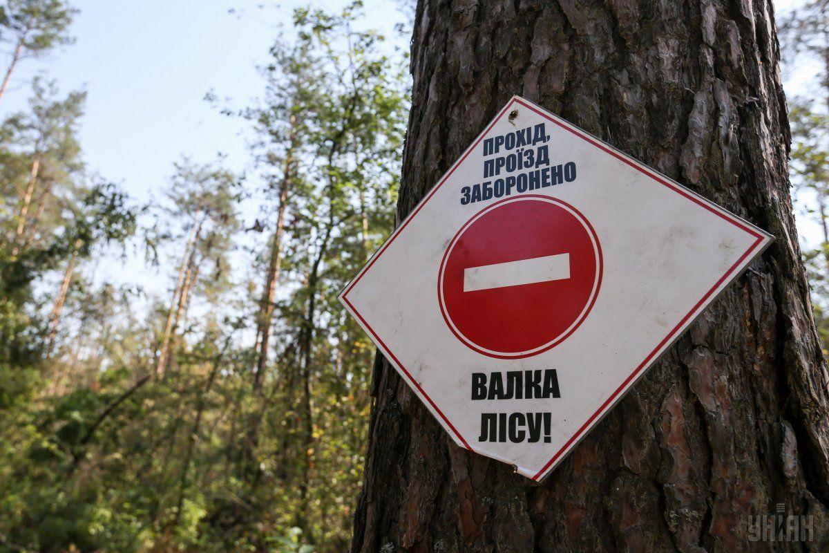 В случае, если ЕС и Украина не смогут договориться о размере компенсации, ЕС имеет право приостановить торговые преференции, предоставленные нашей стране по Соглашению об ассоциации / фото УНИАН