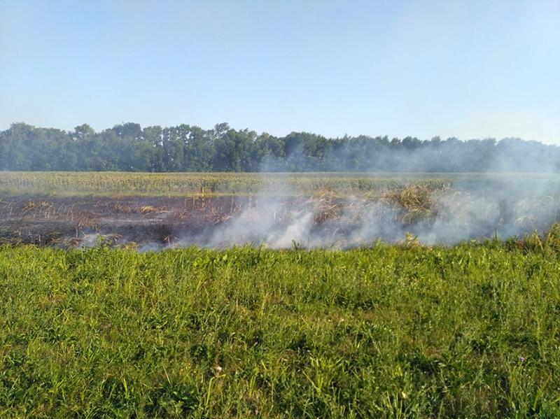 В Полтавской области вспыхнули три природные пожары / ГСЧС