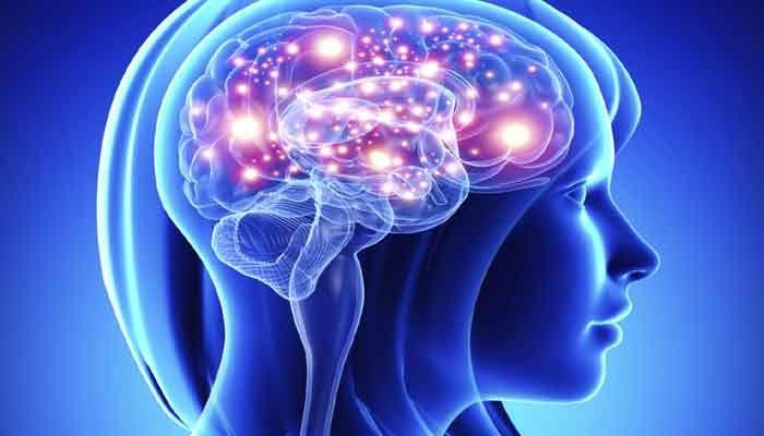 существенно активнее были области, связанные с концентрацией, контролем импульсивных порывов, настроением и беспокойством / zeenews.india.com