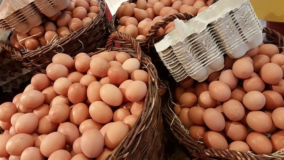 Цены на яйца будут расти / фото pixabay.com