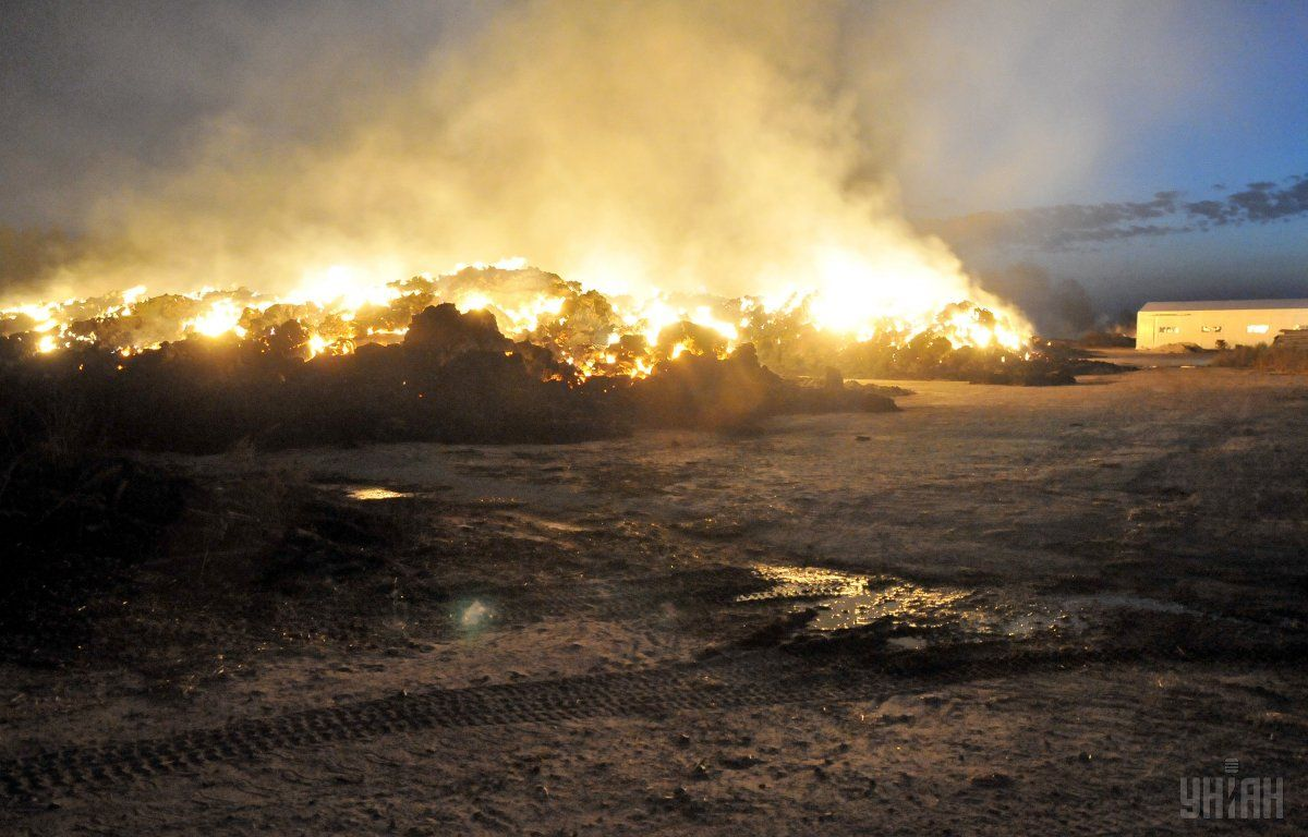 На Луганщині лісова пожежа супроводжується вибухами мін / фото УНІАН
