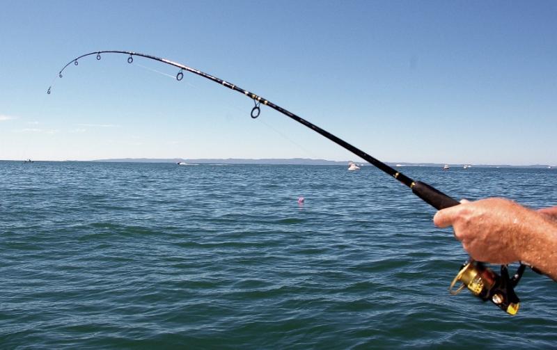 Дівчина попливла в море c рибальською снастю / фото fainaidea.com