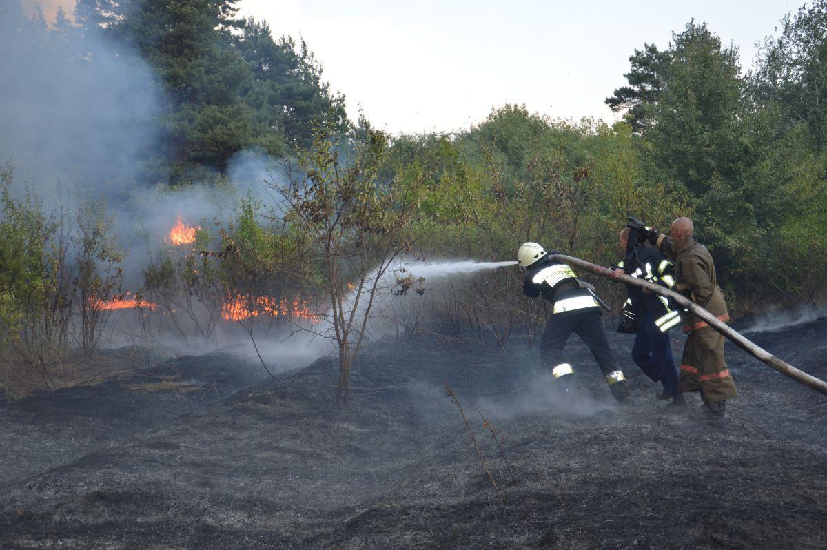 Локализовано несколько очагов горения / фото dsns.gov.ua