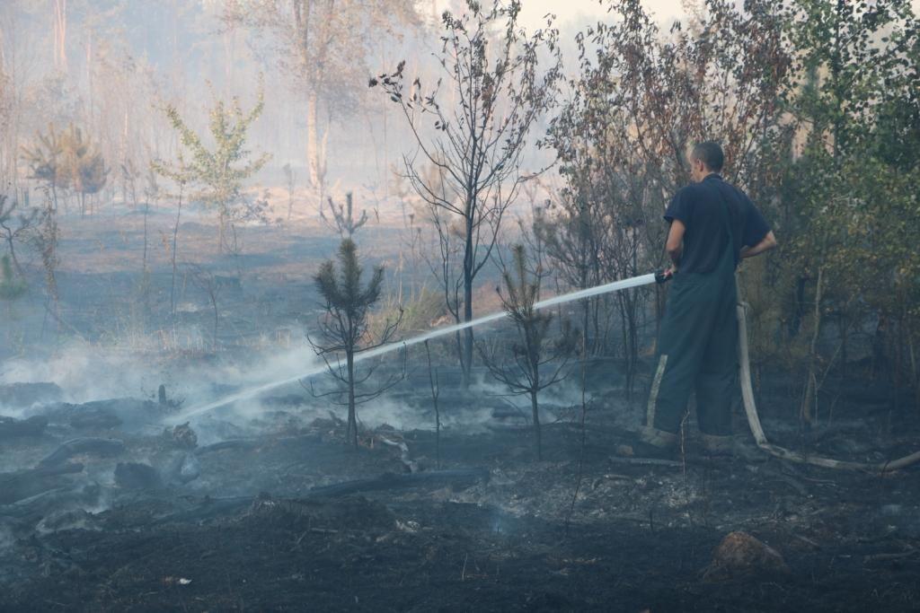 Наразі ліквідація пожежі продовжується / фото kyiv.dsns.gov.ua