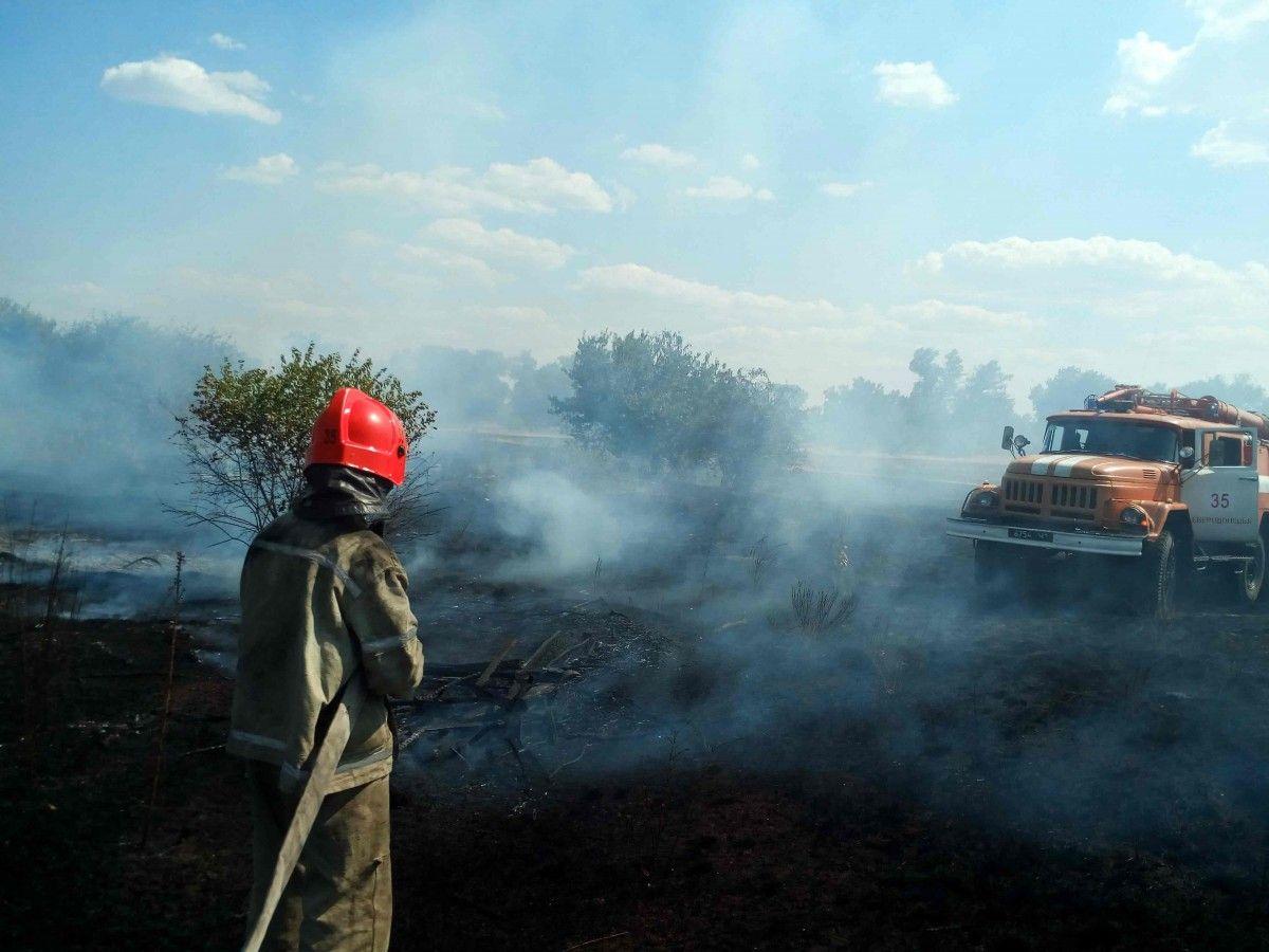 Житомирщина. Продовжують гасити лісову пожежу, яка охопила 120 гектарів