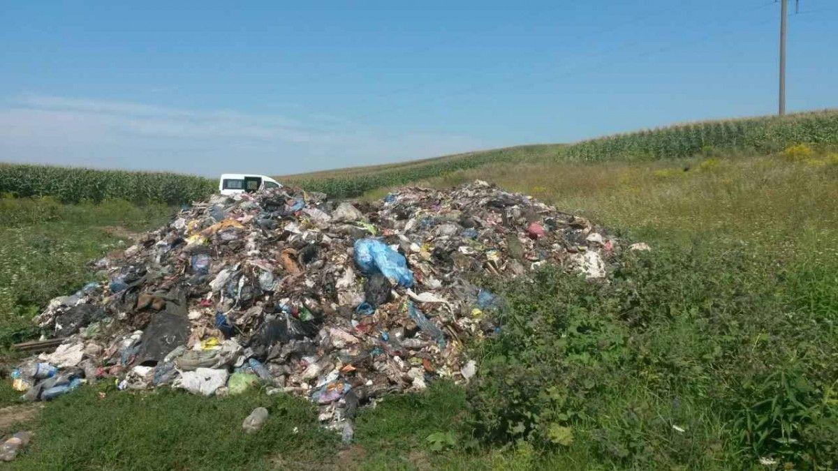 Фото пресс-службы Госэкоинспекции в Тернопольской области