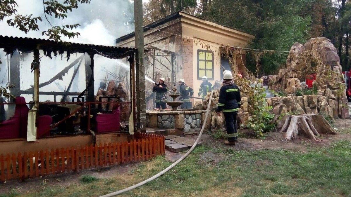 Жертв и пострадавших в результате пожара нет / фото ГСЧС Украины