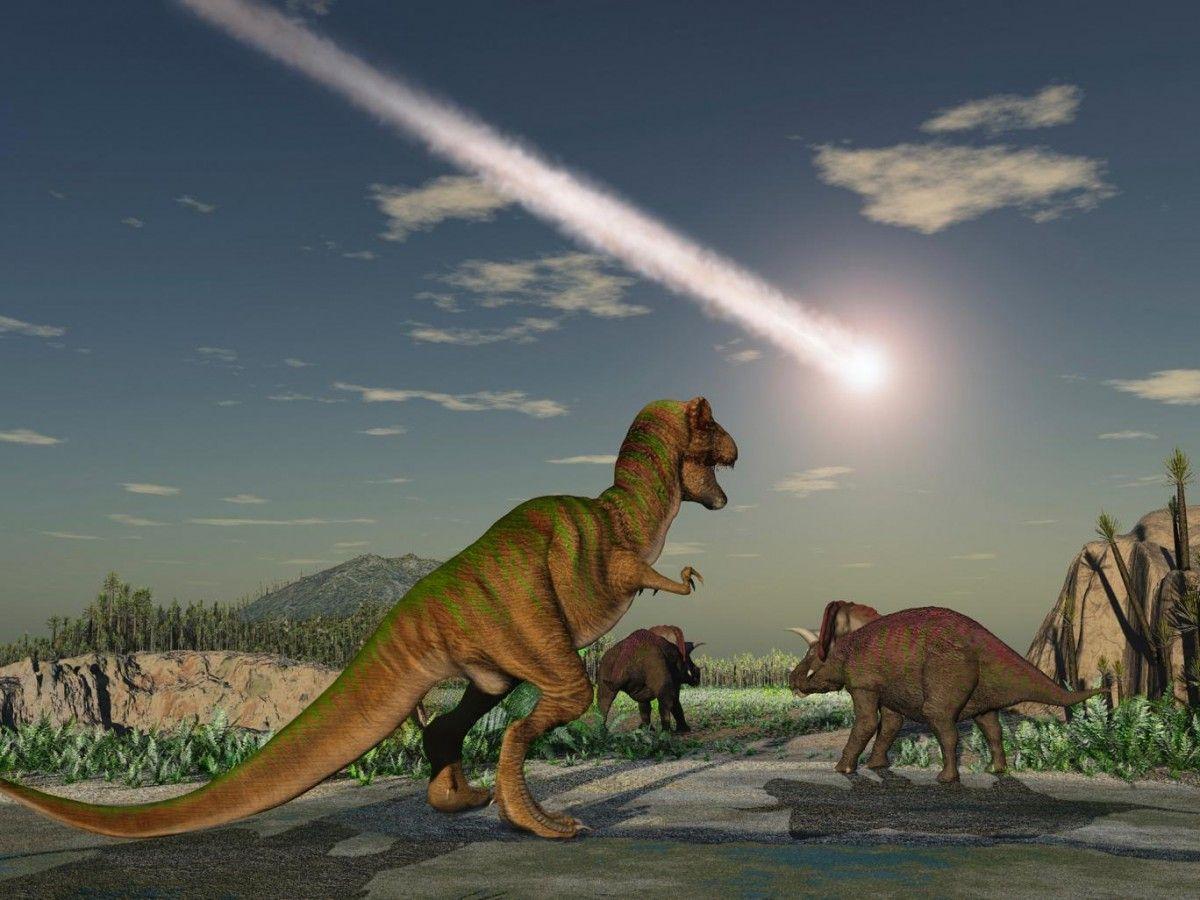 Падение метеорита произошло около 66 миллионов лет назад / фото independent.co