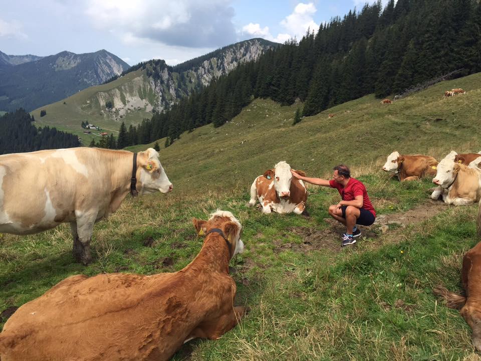 Ляшко сфотографировался с коровами / facebook.com/O.Liashko