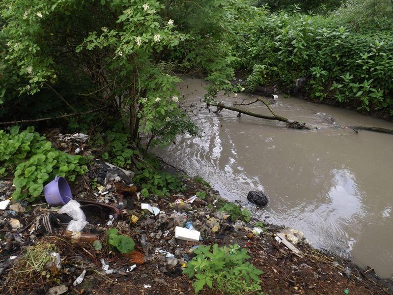 Львівщина. Розчищення русел малих річок