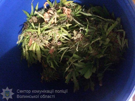 35-летний мужчина намеревался привезти и сбыть наркотики в Червонограде / фото npu.gov.ua