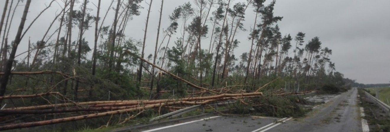 Ураганы в Польше унесли жизни 5 человек, около 30 ранены (фото)
