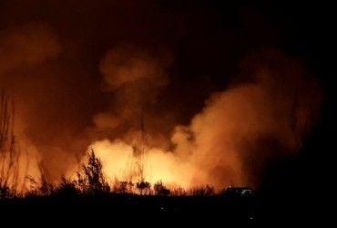 В Китае пожар охватил 10 га леса