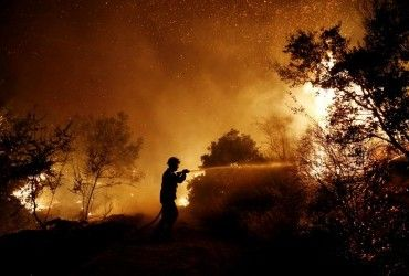 В РФ горит более 80 тысяч га леса