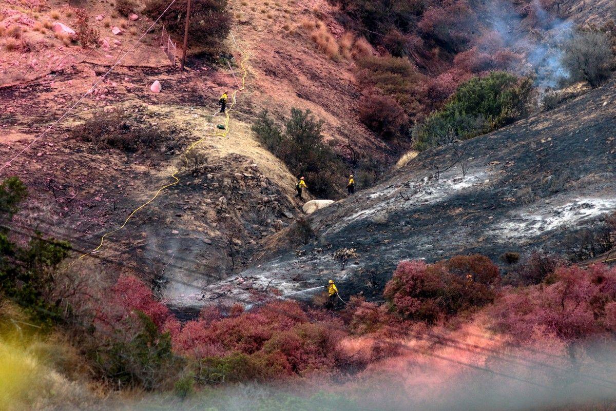 Лісову пожежу в Лос-Анджелесі / REUTERS