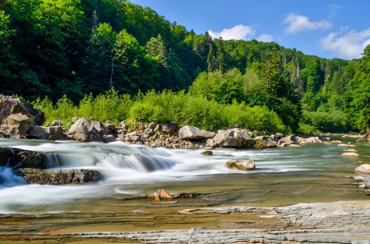Проект реализуется при содействии Министерства экологии и природных ресурсов Украины / фото 112.ua