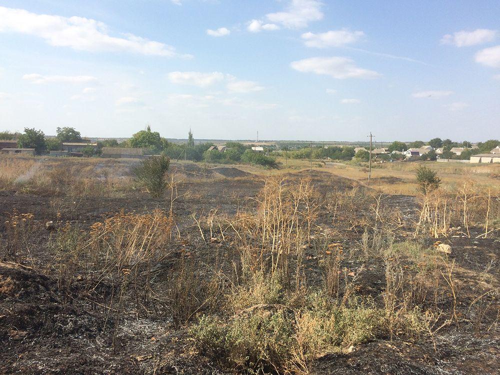 На Миколаївщині горіла суха трава / ДСНС
