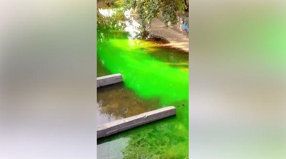 Вода в реке стала зеленой / Скриншот