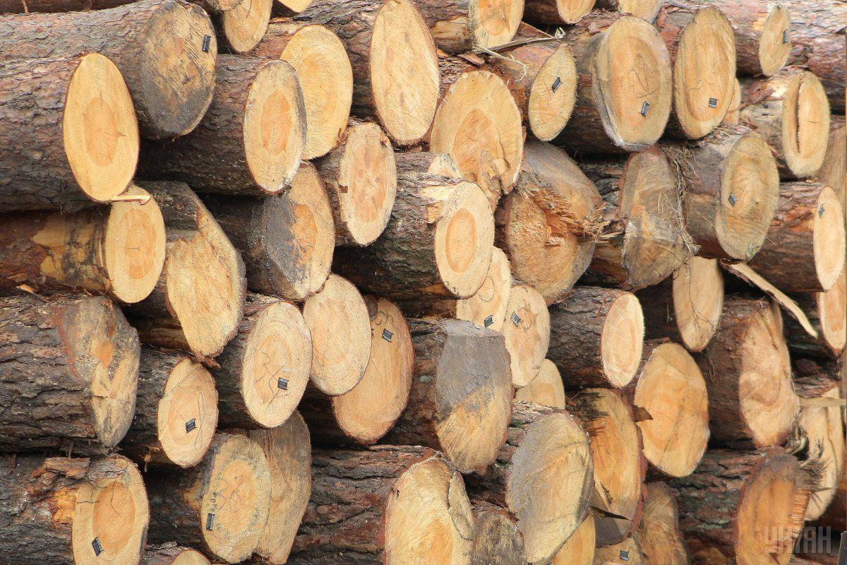 На отопительный сезон этот житель Боярки использует до 20 кубов древесины / фото УНИАН