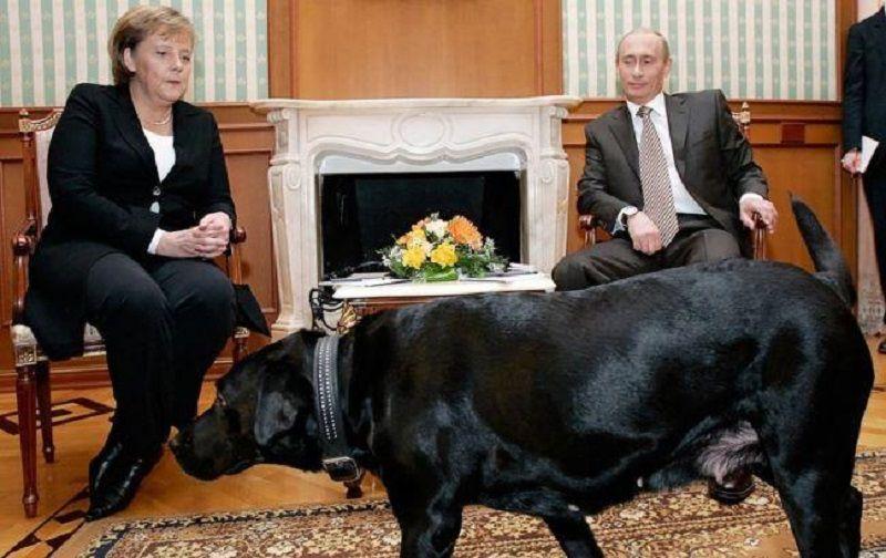 Иронию журналистов сочли оскорблением / Фото пресс-службы Кремля