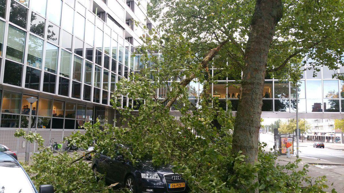 Нідерланди постраждали від сильного вітру / twitter.com, @AT5