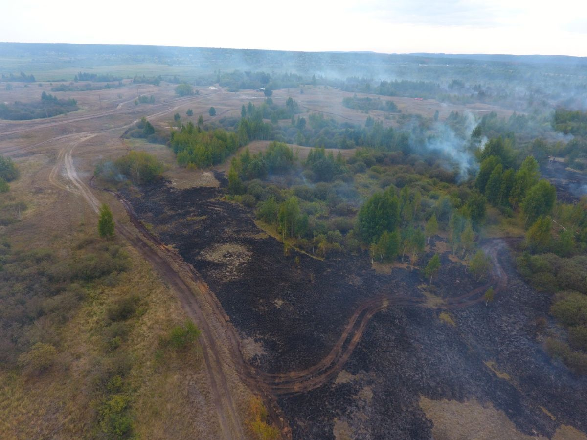 Зафіксовані осередки загорання торф'яного ґрунту / фото dsns.gov.ua