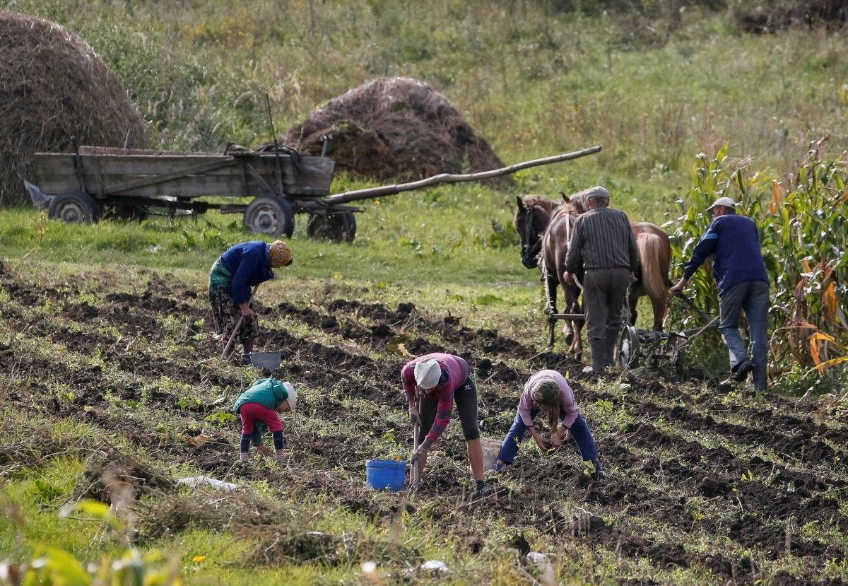 Россиян заставили работать бесплатно вместо отдыха в оккупированном Крыму / фото REUTERS