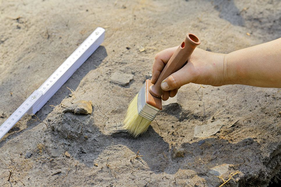 Вчених шокувала несподівана знахідка в могилі середньовічного ченця біля берегів Нормандії