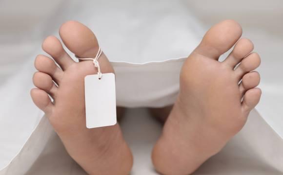Тело девочки нашли в овраге / фото facebook.com/MVS.LVIV