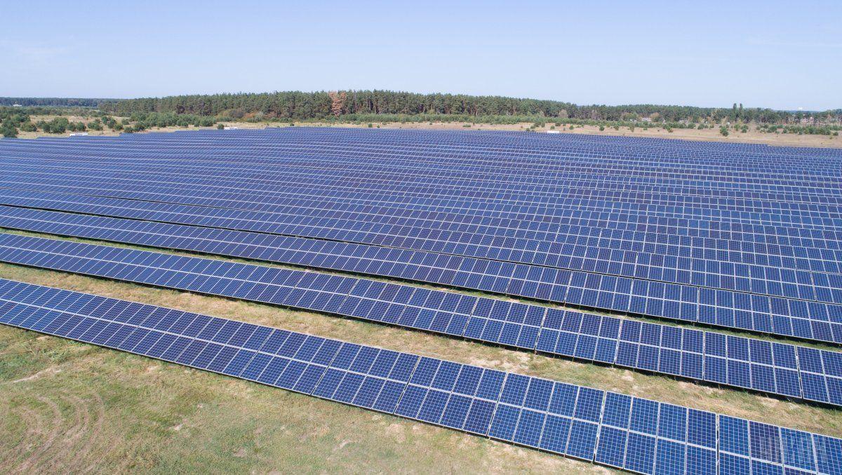Солнечная электростанция в Великой Дымерке / Фото УНИАН
