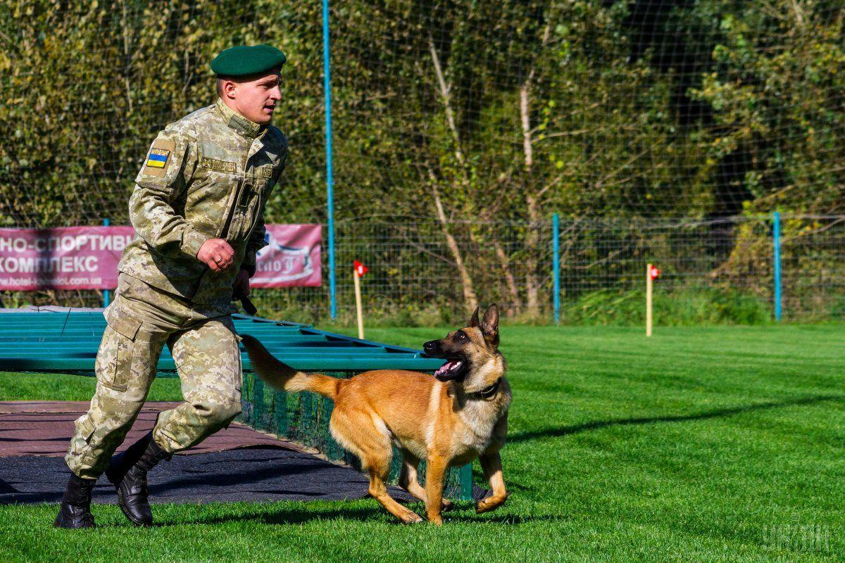 Фахівці кінологічної служби та їхні собаки зосереджені на стаціонарних блокпостах навколо Одеси \ УНІАН