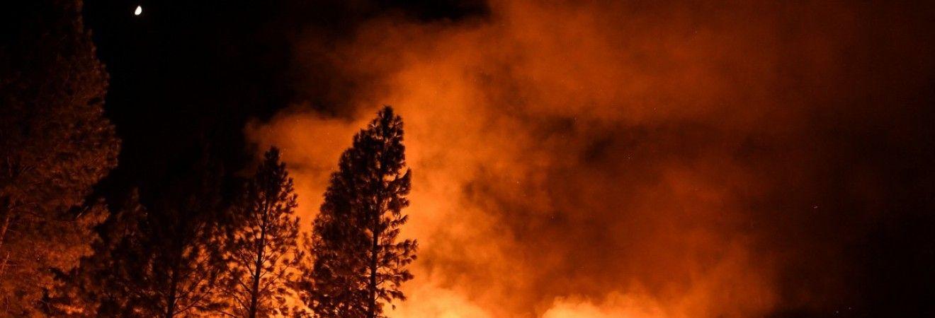 Северо-запад Италии охватили лесные пожары