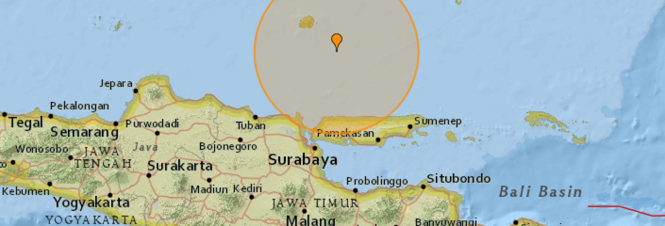 У берегов Индонезии произошло землетрясение