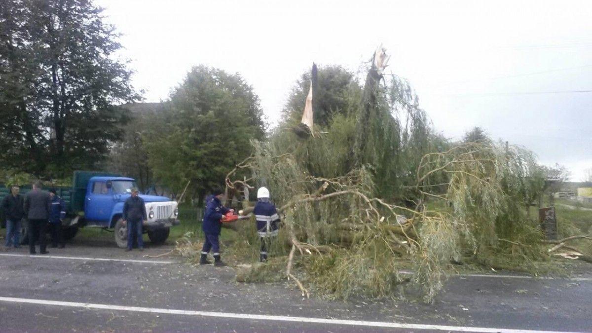 Наслідки негоди на заході України / ДСНС